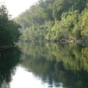 Nepean river gorge cruise B2B100