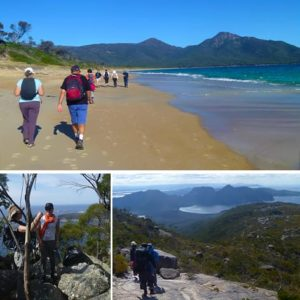 Freycinet Walk, Wineglass Bay Tour, Fully Guided