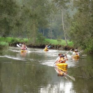 Glenworth Valley Kayaking Tour, Central Coast, NSW