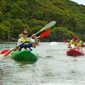 Royal National Park Kayak Tour