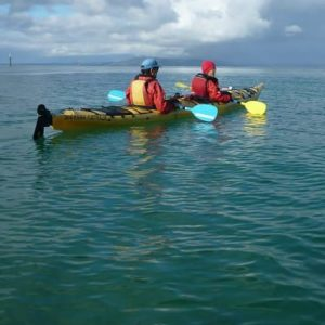 Sorrento Sea Kayaking Tour to Point Nepean Dolphin Sanctuary.