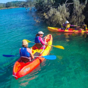 Brunswick River Nature Kayak Tour, Bryon Bay, 2 hrs