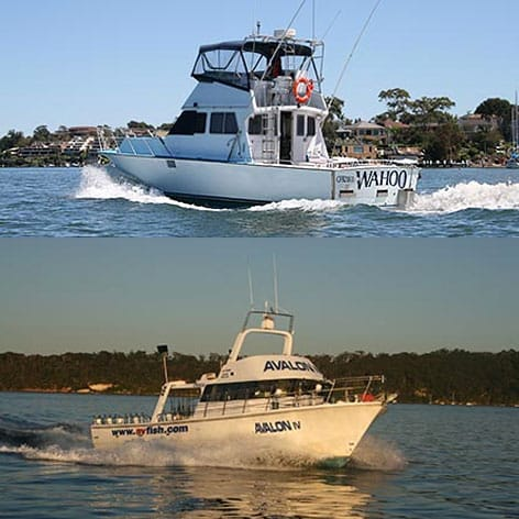Two very fast boats for deep sea fishing Sydney.