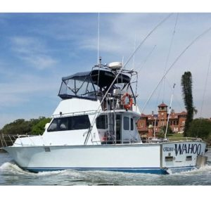 39 foot Flybridge Cruiser used for game fishing charter off Sydney.