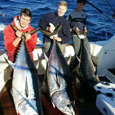 Massive Tuna caught off Sydney. Join our game fishing charters!