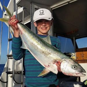 Awesome Kingfish caught off Sydney.
