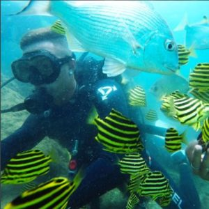 Introductory Scuba Diving with Snorkelling, Gold Coast