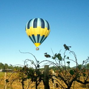 Our balloon in the Hunter Valley