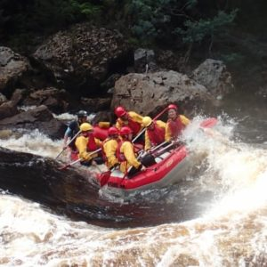 King River Rafting, Tasmania, 1 Day White Water Trip