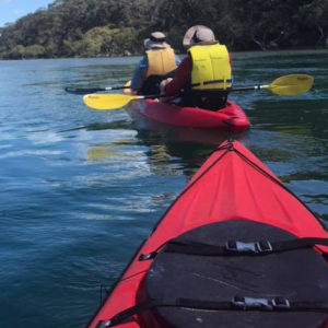 Bundeena-Audley Kayaking Tour, Eco-Adventure