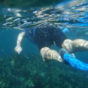 Snorkelling, Kayaking and Island Cruise off Coffs Harbour NSW