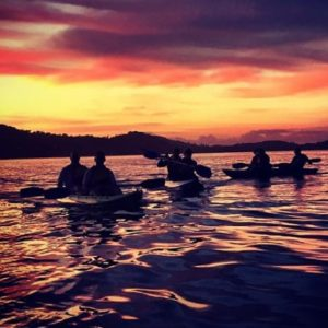 Pittwater Kayaking Tour and Bushwalk, Sunrise, NSW