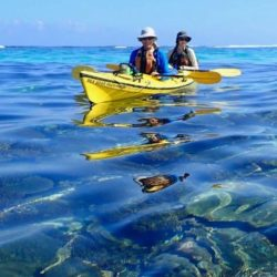Ningaloo Reef Sea Kayaking Snorkel Tour