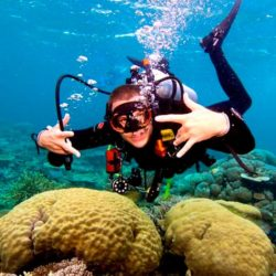 Agincourt Reef Certified Dive Trip Port Douglas QLD