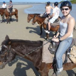 Beach Horse Riding Trip, Cape Tribulation, QLD