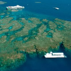 Introductory Dive and Cruise, Marine World, Great Barrier Reef