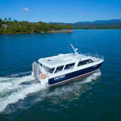 Low Island Snorkelling Tour, Port Douglas, QLD
