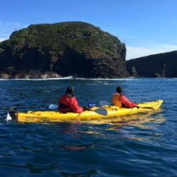 South Coast Sea Kayaking Tour, Full Day
