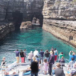 Jervis Bay Passage Cruise from Huskisson